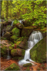 Wall sticker  Waterfall in the forest - Thomas Herzog