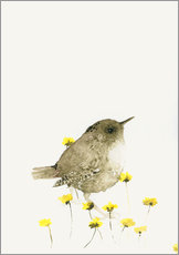 Wall sticker  Wren amongst yellow flowers - Dearpumpernickel
