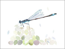 Wall sticker  Dragonfly Building - Verbrugge Watercolor