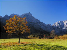 Gallery print  Autumn in Alps - Dieter Meyrl