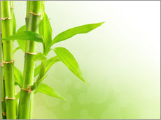 Gallery Print  green bamboo
