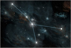 Wall sticker  An artist's depiction of the constellation Cancer. - Marc Ward