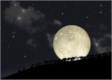 Wall sticker  A full moon rising behind a row of hilltop trees. - Marc Ward
