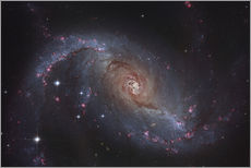 Wall sticker Barred spiral galaxy NGC 1672 in the constellation Dorado.
