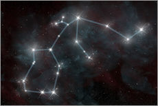 Gallery print  Artist's depiction of the constellation Aquarius the Water Bearer. - Marc Ward