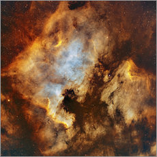 Gallery print  The North America Nebula and Pelican Nebula in Cygnus. - Rolf Geissinger