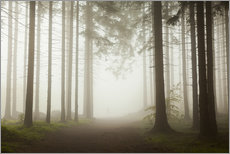 Wall sticker  Magic Forest - Fog - Mikolaj Gospodarek