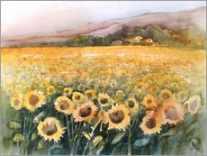 Gallery print  Sunflower field in the Luberon, Provence - Eckard Funck