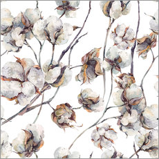 Gallery print  Cotton Blossom