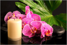 Gallery Print  Zen still life with orchids