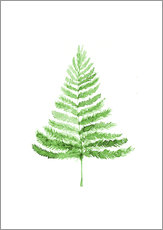 Wall Sticker  Fern - RNDMS