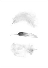 Gallery print  Feathers - RNDMS