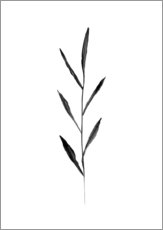 Wall sticker  Minimalist leaf - RNDMS