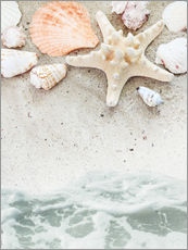 Gallery print  Sea Beach with starfish