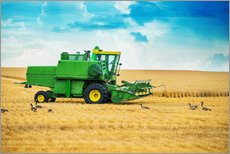 Gallery print  Harvest on the field