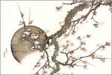 Wall sticker Plum blossom and the moon