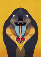 Wall sticker  Mandrill - Dieter Braun