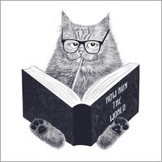 Gallery print  Reading cat - Valeriya Korenkova