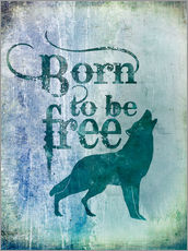 Andrea Haase - born to be free