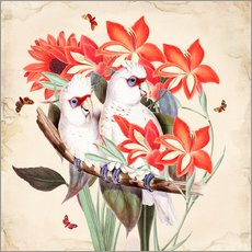 Wall sticker  Oh My Parrot XI - Mandy Reinmuth
