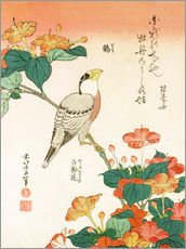 Wall sticker  Mirabilis jalapa and grosbeak - Katsushika Hokusai