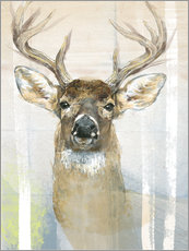 Gallery print  Whitetailed Deer Surrounded By Birches - Ashley Verkamp