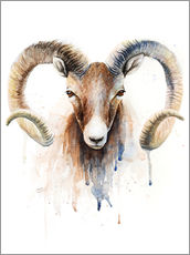Wall sticker  Aries - Nadine Conrad