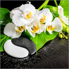 Wall sticker Spa arrangement with white orchid