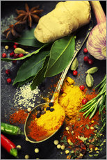 Gallery print  Colorful spices