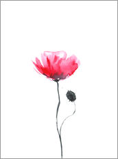 Wall sticker  Poppy - RNDMS