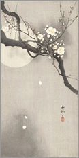 Gallery print  Plum Blossoms at Night - Ohara Koson