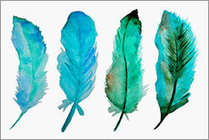 Gallery print  Four feathers