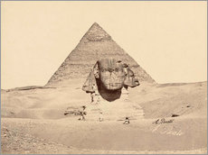 Gallery print  Chephren pyramid and sphinx - Antonio Beato