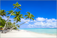 Wall sticker  White beach and palm trees in the tropics - Jan Christopher Becke