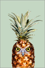 Wall Stickers  PINEAPPLE OWL - Jonas Loose