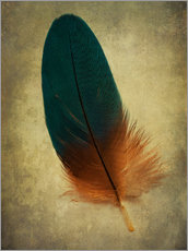 Wall sticker Green and orange feather