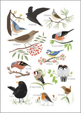 Gallery print  Garden birds (German) - Sandy Lohß