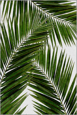 Wall sticker  Palm leaf III - Orara Studio