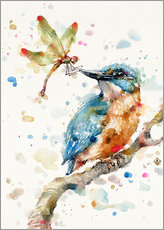 Wall sticker  Interesting relationships (kingfisher and dragonfly) - Sillier Than Sally