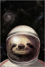 Wall sticker Space Sloth