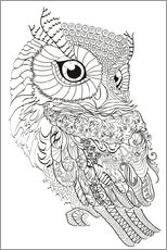 Colouring poster  Owl