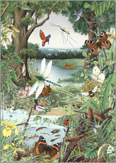 Wall sticker  Enchanted forest
