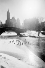 Gallery print  Fifth Avenue skyline from Central Park - SuperStock