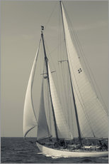 Gallery print  Sailboat in the wind at Cape Ann - Walter Bibikow