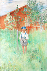 Wall sticker  Esbjorn by his own apple tree - Carl Larsson