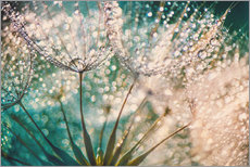 Gallery print  Dandelion dropper dream - Julia Delgado