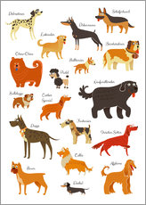 Gallery print  Dogs in all sizes - Kidz Collection