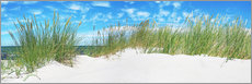 Acrylic glass  Panorama of Dunes, Baltic Sea - Art Couture