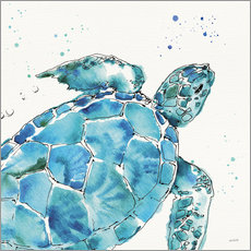 Canvas print  Turtle IX - Anne Tavoletti