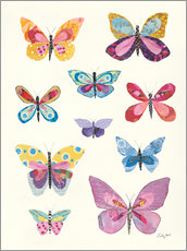 Premium poster Butterfly Charts II